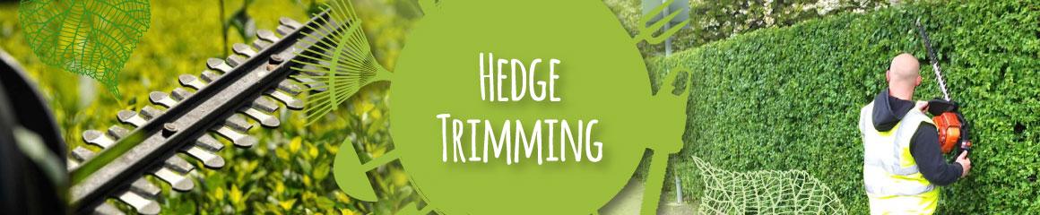 Twiggs Hedge Trimming Barnsley